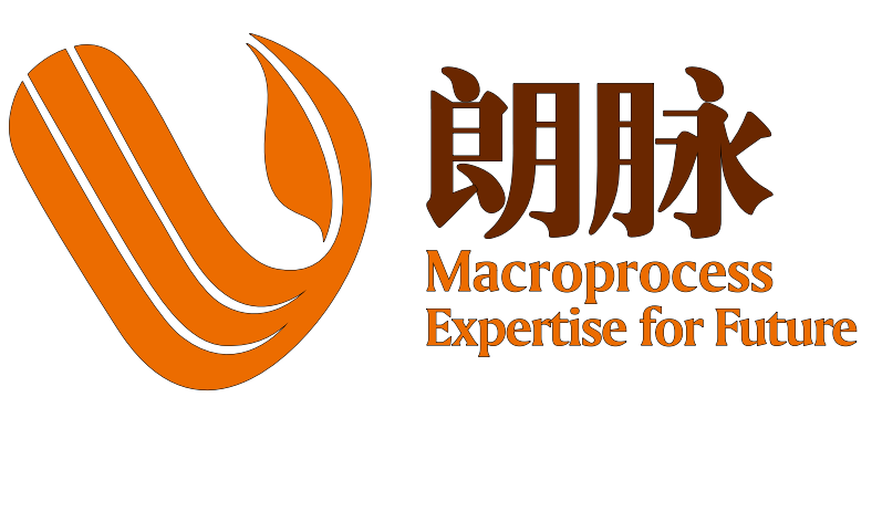 Shanghai Macroprocess Lustration Technology Co., Ltd.