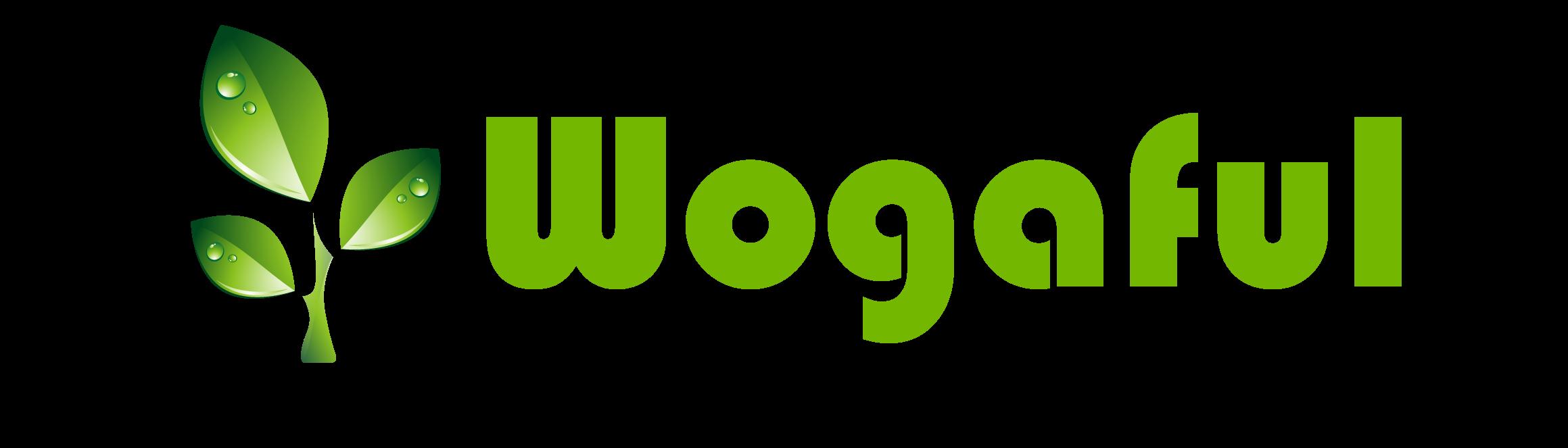 Fuan Wogaful Electronics Co.,Ltd